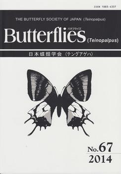 cover no.67.jpg