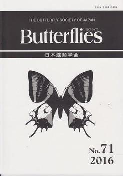 No.71 cover.jpg